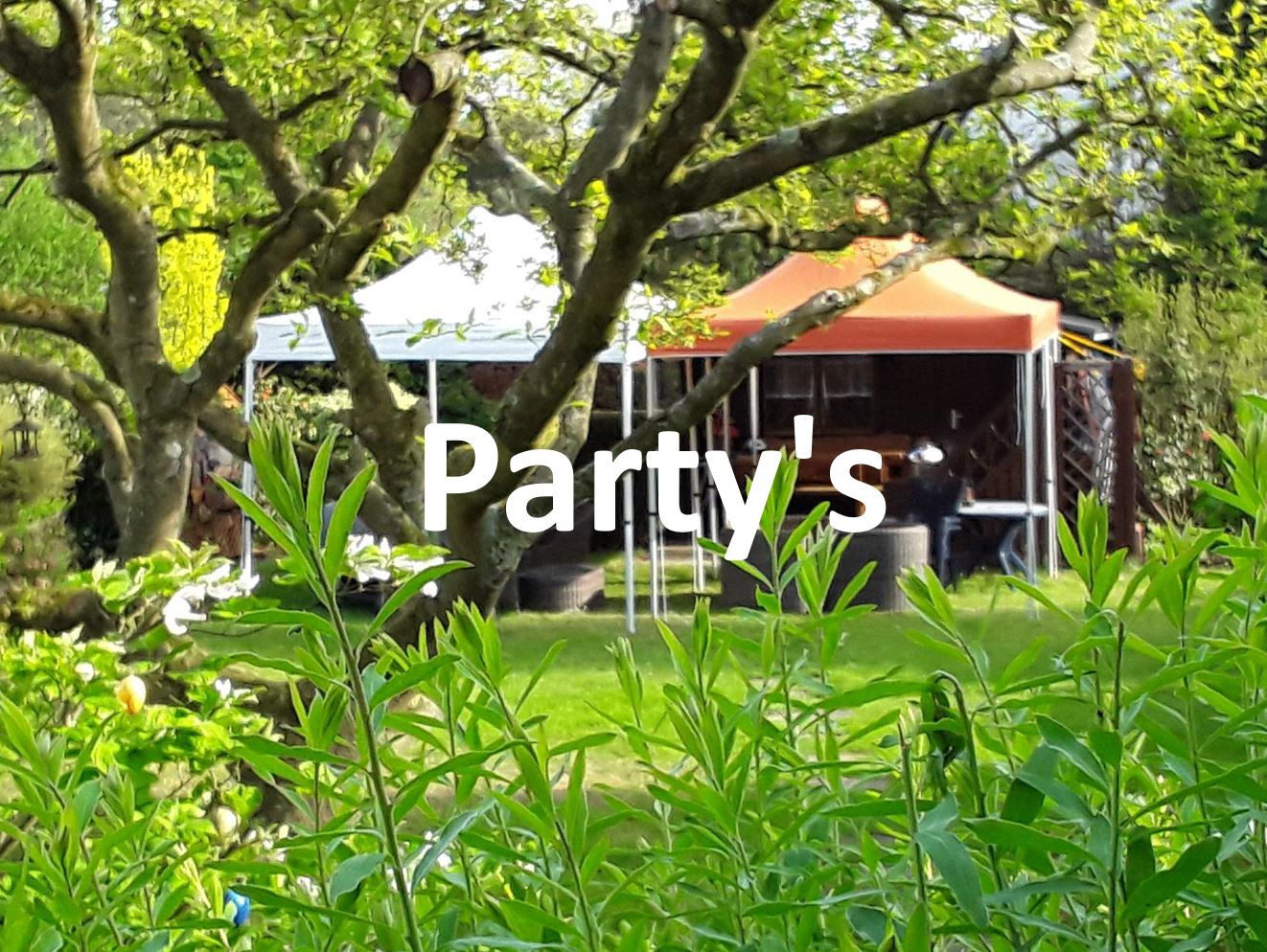 Party in Koeln